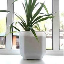 Великий білий квадратний вазон для великих рослин 23 л, підлоговий вазон