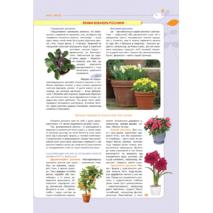 Нова енциклопедія кімнатних рослин Автор Марія Цвєткова