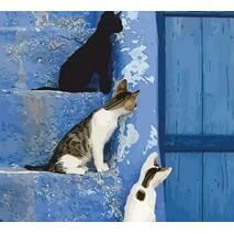 """Картина за номерами 35х45 см """"Кошенята на сходах"""" Rosa N00013246"""