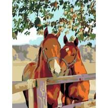 """Картина за номерами 35х45 см """"Пара коней"""" Rosa"""