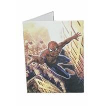 Набір для вечірки Spider Man