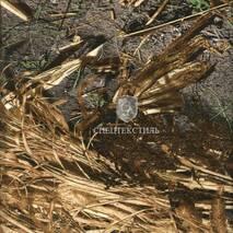 Ткань Саржа принт (лесные дизайны) с брашем