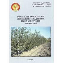 Формування та обрізування дерев сливи в насадженнях різних конструкцій (рекомендації)
