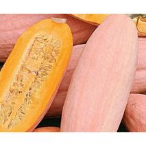 Тыква Розовый банан за 2 г (ЕГР-22)