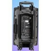 Аккумуляторная колонка с усилителем Temeisheng DP-297F