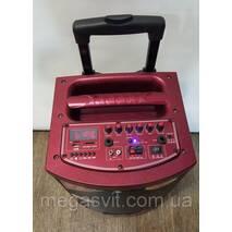 Temeisheng A - 71 колонка акумуляторна з Bluetooth