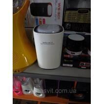 Колонка беспроводная с Bluetooth WS-S01
