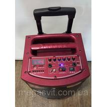 Аккумуляторная колонка с Bluetooth Temeisheng A -71