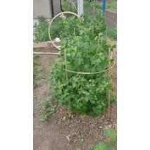 Опоры, колышки для растений и цветов Polyarm
