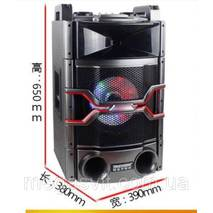 Колонка активная Temeisheng T240