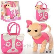 Собачка в сумочке Кикки аналог Chi Chi Love Чихуахуа музыкальная.