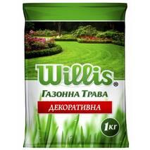 Трава Декоративна, Willis купити в Хмельницькому