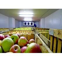 Фруктохранилища и овощехранилища купить в Украине