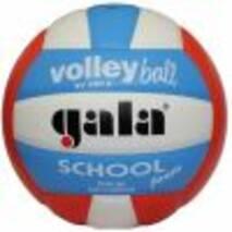 Волейбольний м'яч Gala School Foam BV5511S (Натуральна шкіра)