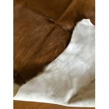 Телячья шкура (коричнево-белая)