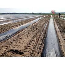 Пленкоукладчикигрядообразователь для посадки ягодных и овощных культур
