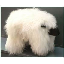 Белая шкура овцы