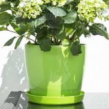 Горщик для кольорів Магнолія, ясно-зелений 180 мм