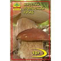 Міцелій гриба Польський, 10 гр
