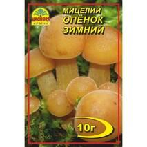 Міцелій гриба Опеньок зимовий, 10 гр