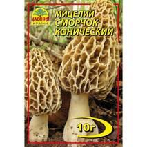 Міцелій гриба Сморчок конічний, 10 гр