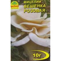 Міцелій гриба Вешенки рожевої, 10 гр