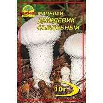 Міцелій гриба Дощовик їстівний, 10 гр