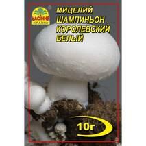 Міцелій гриба Шампіньйон королівський білий 10г
