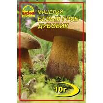 Міцелій білого гриба Дубовика, 10 гр