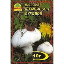 Міцелій гриба Шампіньйон лугової 10г