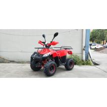 Квадроцикл - TIGER B-110CC (110cm3)