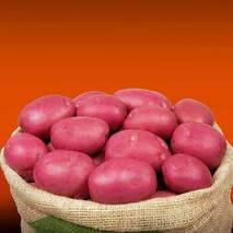 Картопля Інфиніті сітка 3 кг.