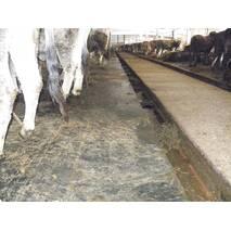 Гумовотканинні покриття для підлоги