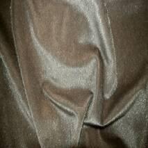 Нерпа сіро-коричневий