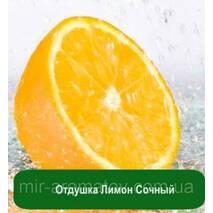 Отдушка Лимон Сочный
