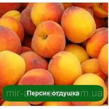 Отдушка Персик-Нектарин