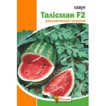 Семена арбуза Талисман  , 1 гр