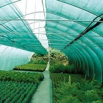 Сетка затеняющая 40% (1,75х100 м) зеленая