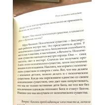 Книга «Река чистоты побеждает», автор Шри Чинмой