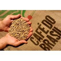 Свіжообсмажена зернова кава Бразилія Сантос (250 г)