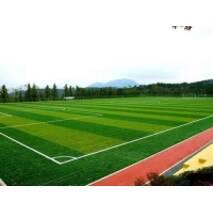 Насіння Спортивний газон, 1кг
