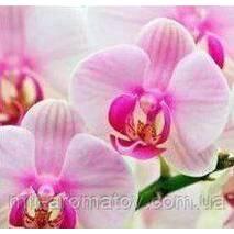 Аромат Орхідея  100 грам