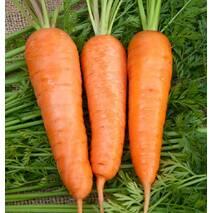 Морковь Бабушкины вкусности за 20 г  (ЕМР-72)