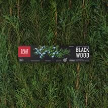 Отбеливающая зубная паста Special Blackwood с углем 75 мл Splat
