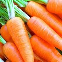 Морковь Самый сок за 20 г (ЕМР-71)