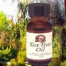 Масло австралийского эфирного чайного дерева NSP