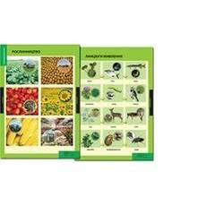 Природознавство, 3-4 класи. Навчально-методичний посібник та додаток з 11 таблиць.