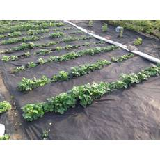 Агроволокно черное 50% 3.2 метра