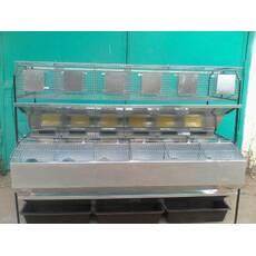 Клітка маткова відгодівельна, пристінна, модифікована КМОП-2, купити в Одесі