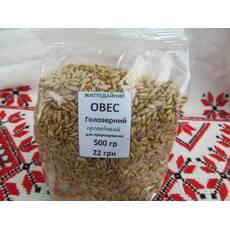 Овес голозерный зерно для проращивания органическое купить недорого
